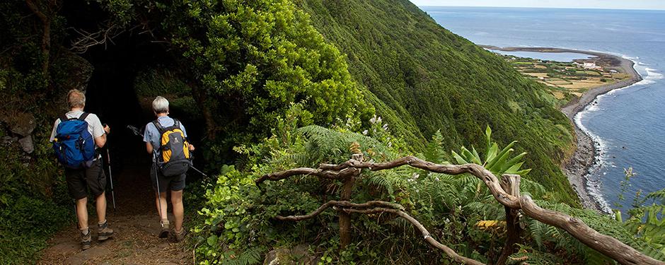 escola profissional da ilha de são jorge curso técnico de turismo